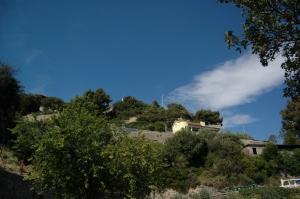 Uno scorcio della collina di Collasgarba, allo stato attuale